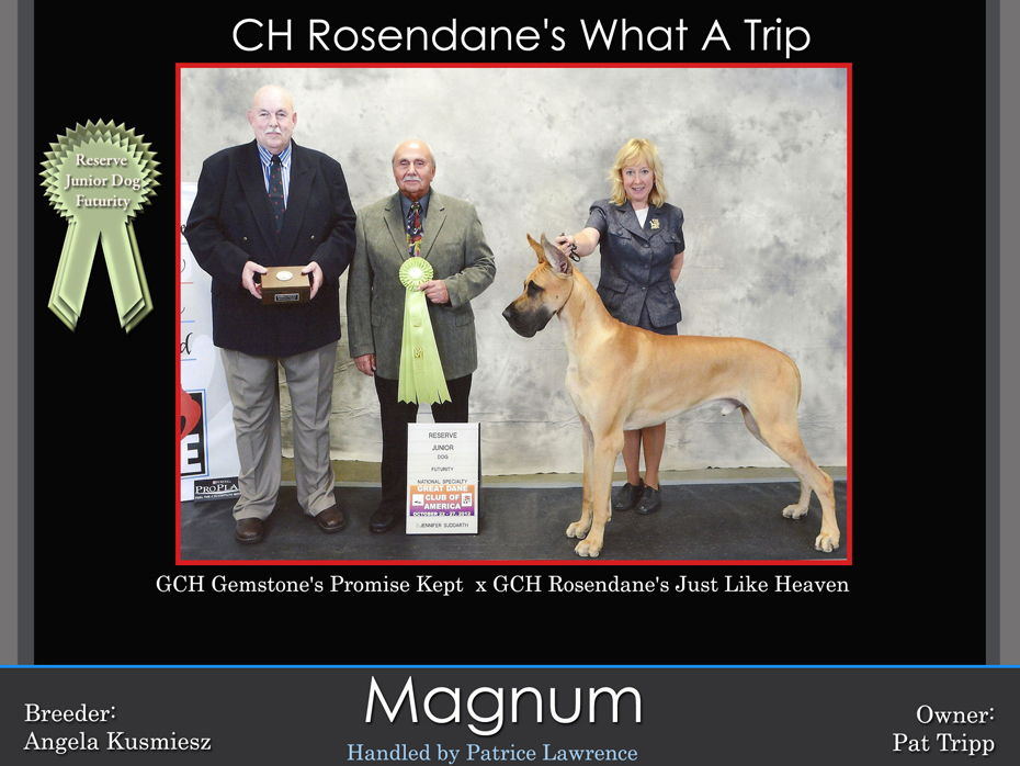 Magnum-reserve-junior-dog-futurity-