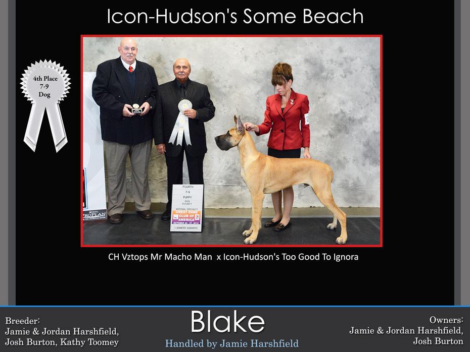 blake-7-9-dog-futurity