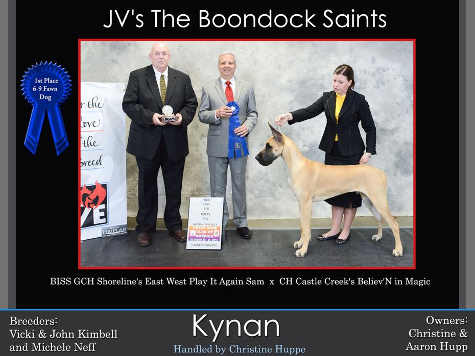 kynan-6-9-fawn-dog