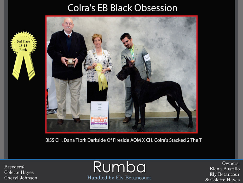 rhumba-3rd-15-18-bitch
