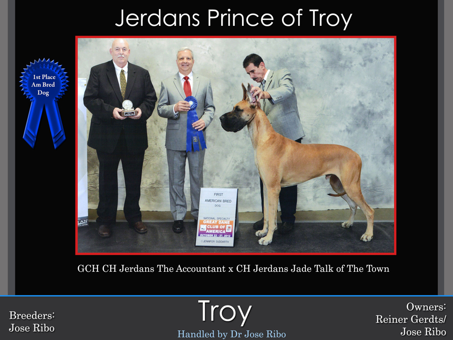 troy-1st-am-bred-dog