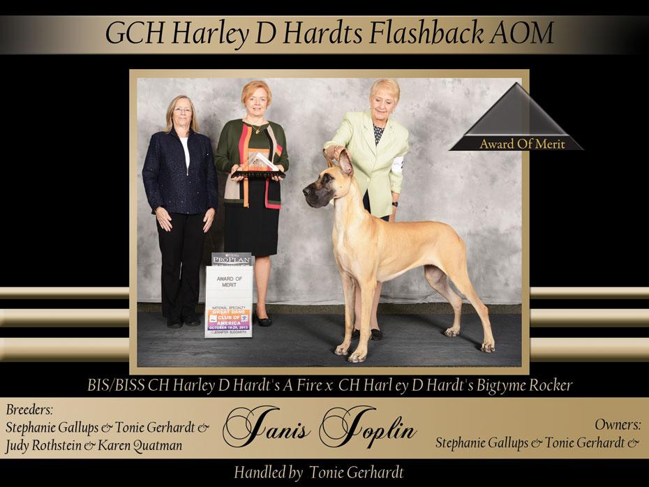 AOM-GCH-Harley-D-Hardts-Flashback