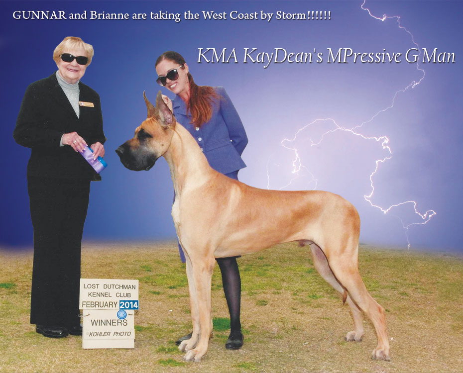 "March Feature – KMA KayDean's MPressive G Man ""Gunnar"""