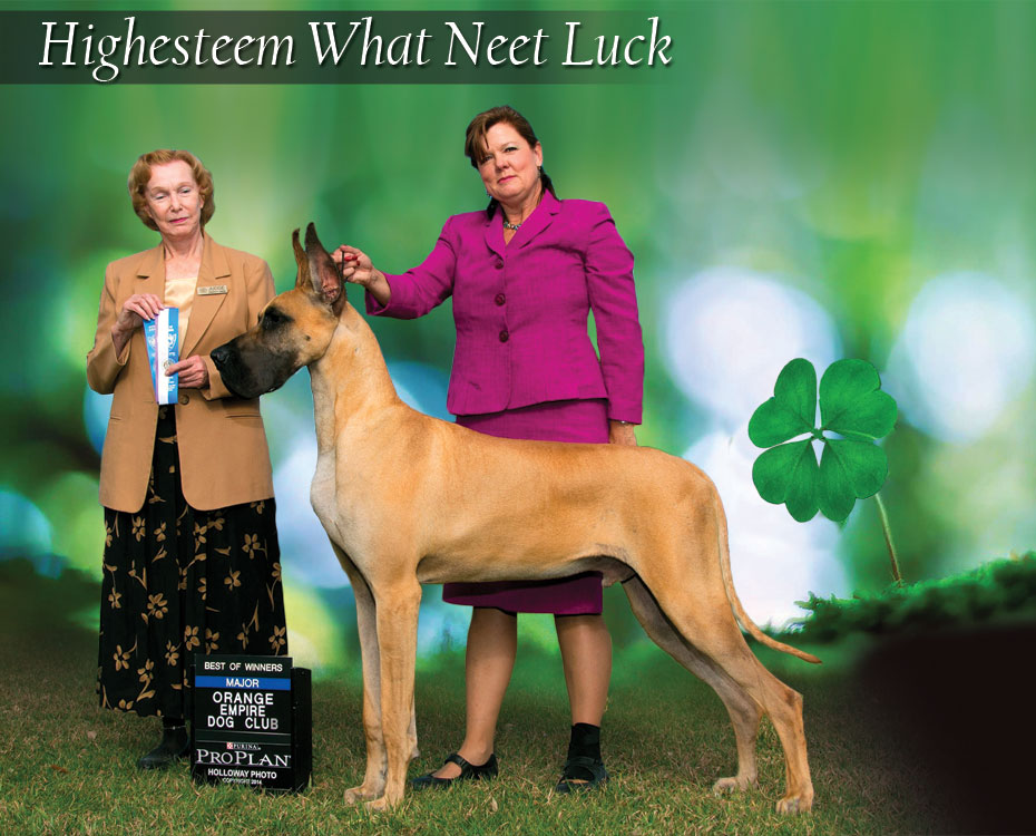 "March Feature – Highesteem What Neet Luck ""Lucky"""
