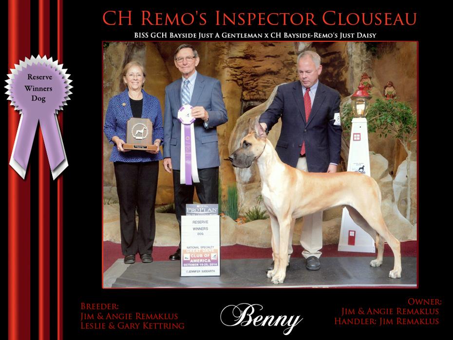 Reserve WInners Dog Benny