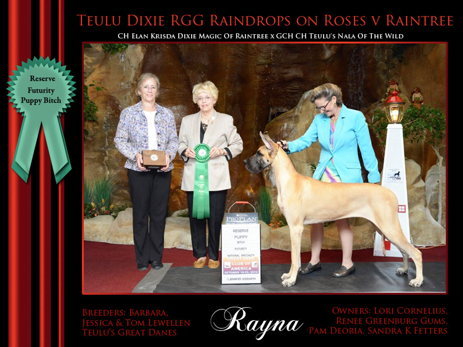 Reserve_Puppy_Bitch_Futurity_Rayna