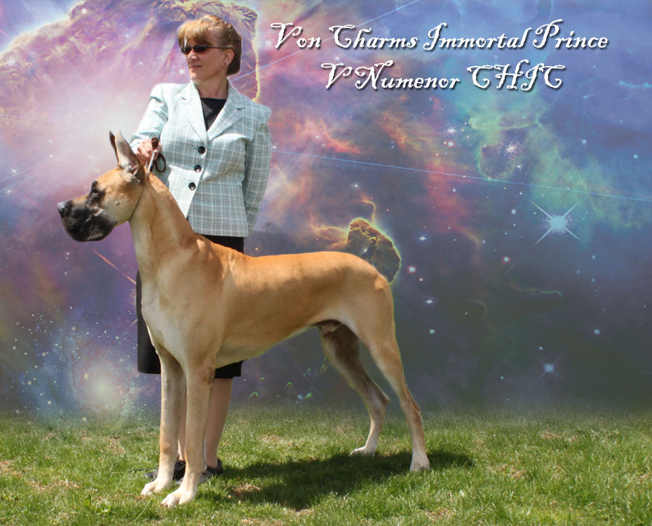 """May Feature – Von Charm's Immortal Prince V Numenor CHIC """"Hans"""""""