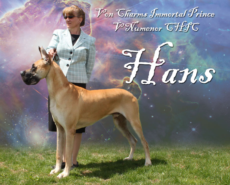"May Feature – Von Charm's Immortal Prince V Numenor CHIC ""Hans"""