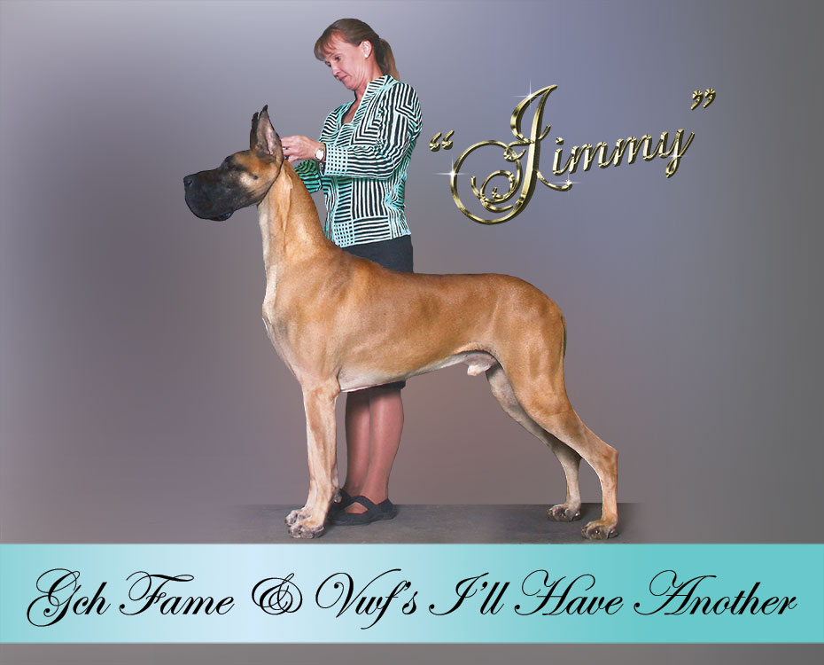 "August Feature – GCH Fame & VWF's I'll Have Another ""Jimmy"""