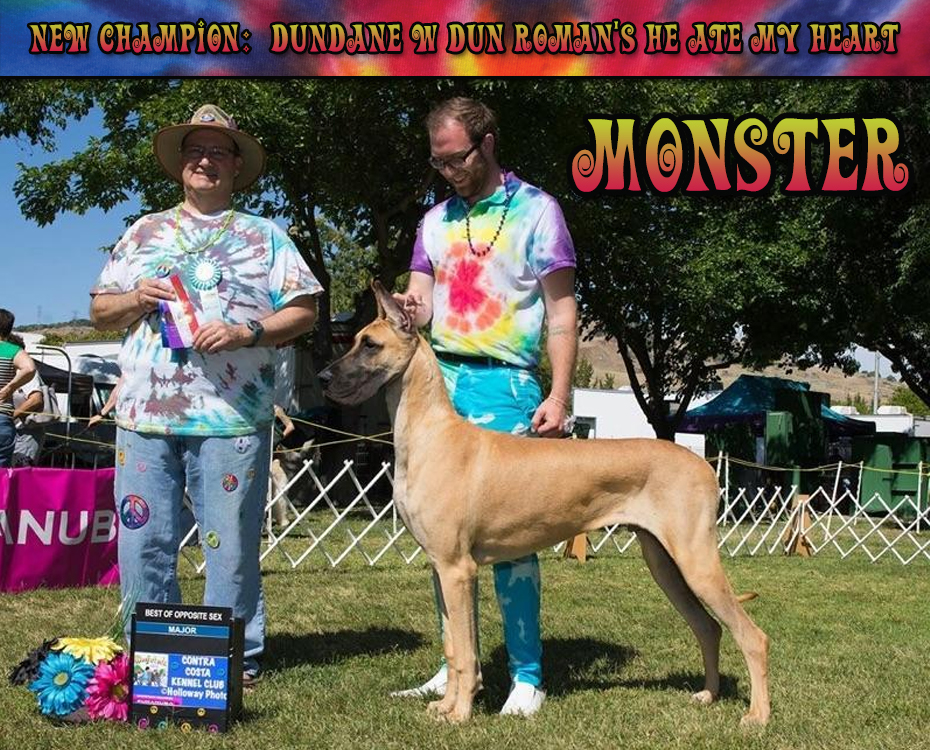 "September Feature – CH Dundane W Dun Roman's He Ate My Heart ""Monster"""