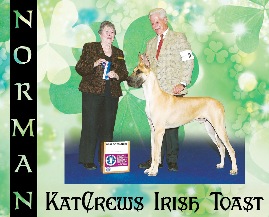 "February Feature – KatCrews Irish Toast ""Norman"""
