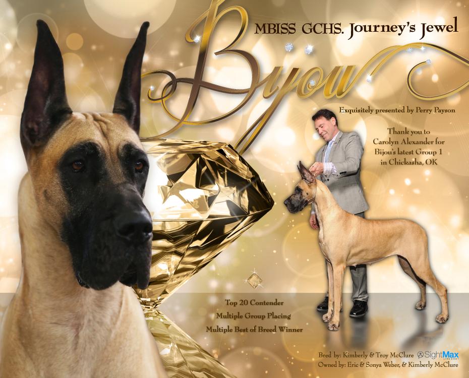 """December Feature – MBISS GCHS Journey's Jewel """"Bijou"""""""