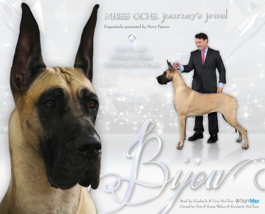 "September Feature – MBISS GCHS Journey's Jewel ""Bijou"""