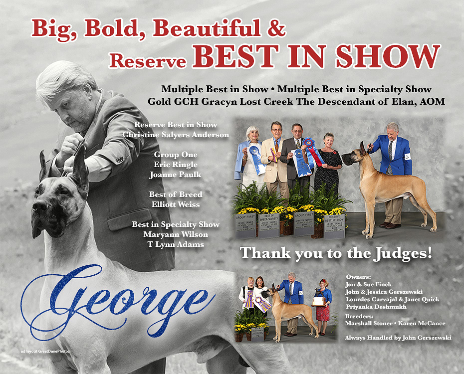 "September Feature – MBIS MBISS Gold GCH Gracyn Lost Creek The Descendant of Elan, AOM ""George"""