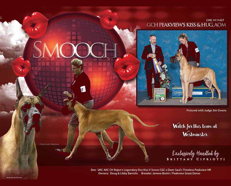 "February Feature – GCH Peakview's Kiss & Hug, AOM ""Smooch"""
