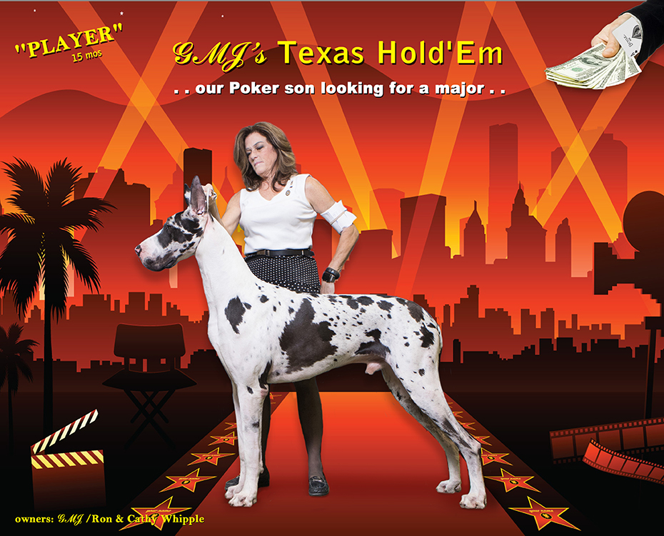 """December Feature – GMJ's Texas Hold'Em """"Player"""""""