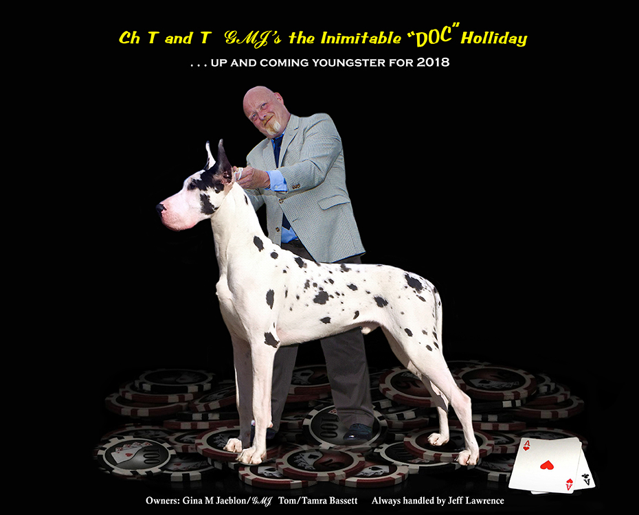 """December Feature – CH T and T GMJ's the Intimitable """"DOC"""" Holliday """"Doc"""""""