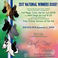 National Winners Print Issue