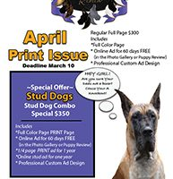 Stud Dog Print Issue