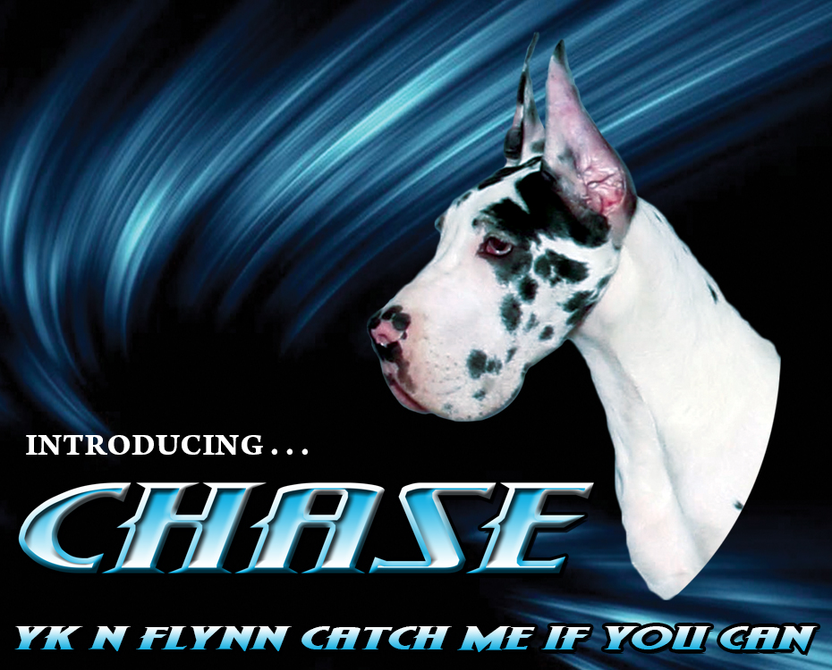 "Feature – YK N Flynn Catch Me If You Can ""Chase"""