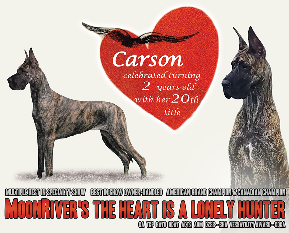 "Feature – ""Carson"""