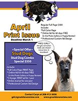April 2019 Print Issue