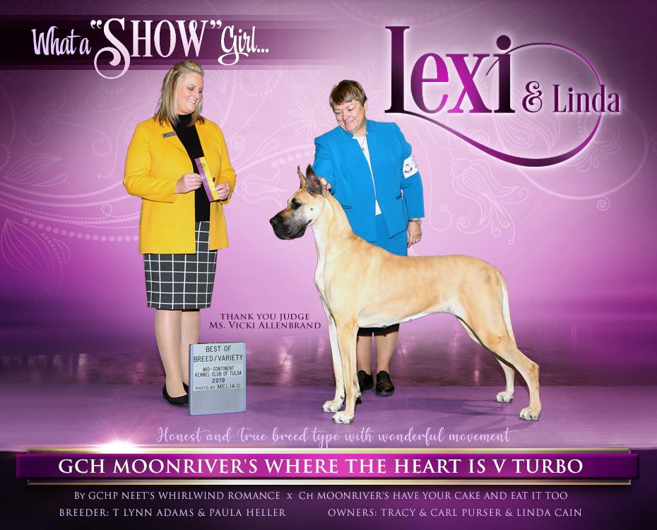 """GCH MoonRiver's Where The Heart Is V Turbo """"Lexi"""""""