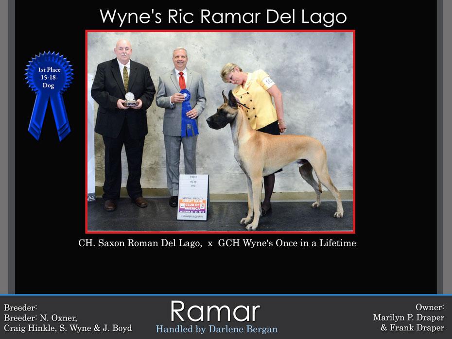 ramar-1st-15-18-dog
