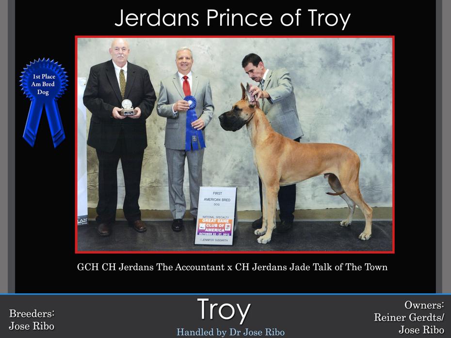 troy-1st-am-bred-dog