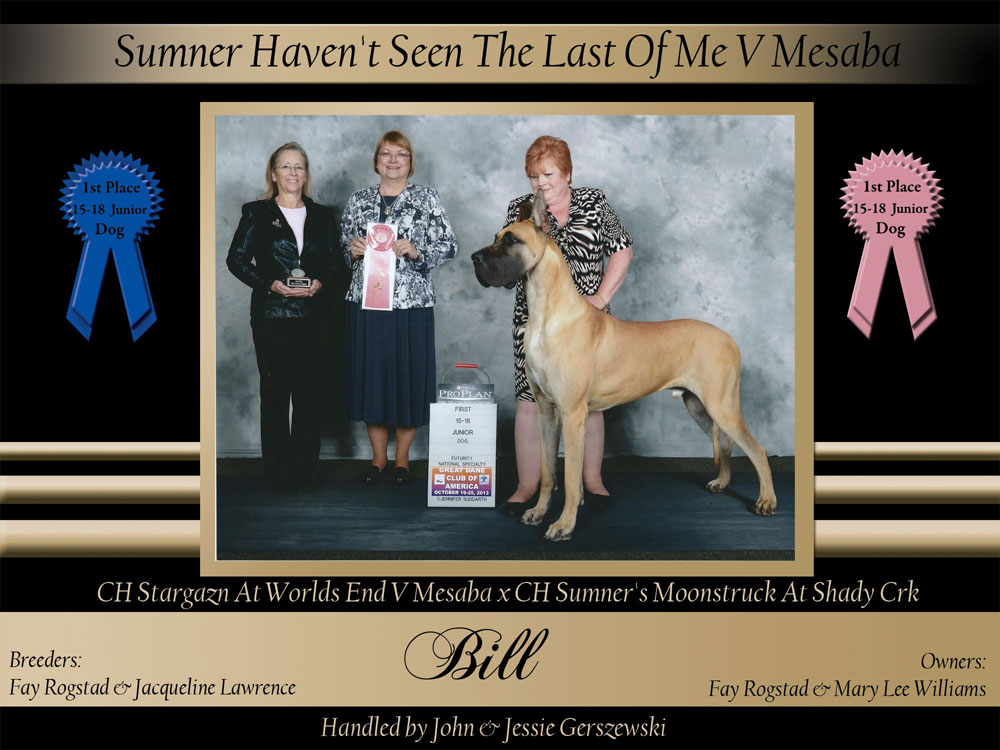 1st-15-18-futurity-and-reg-dog-Sumner-Haven't-Seen-The-Last-Of-Me-V-Mesaba