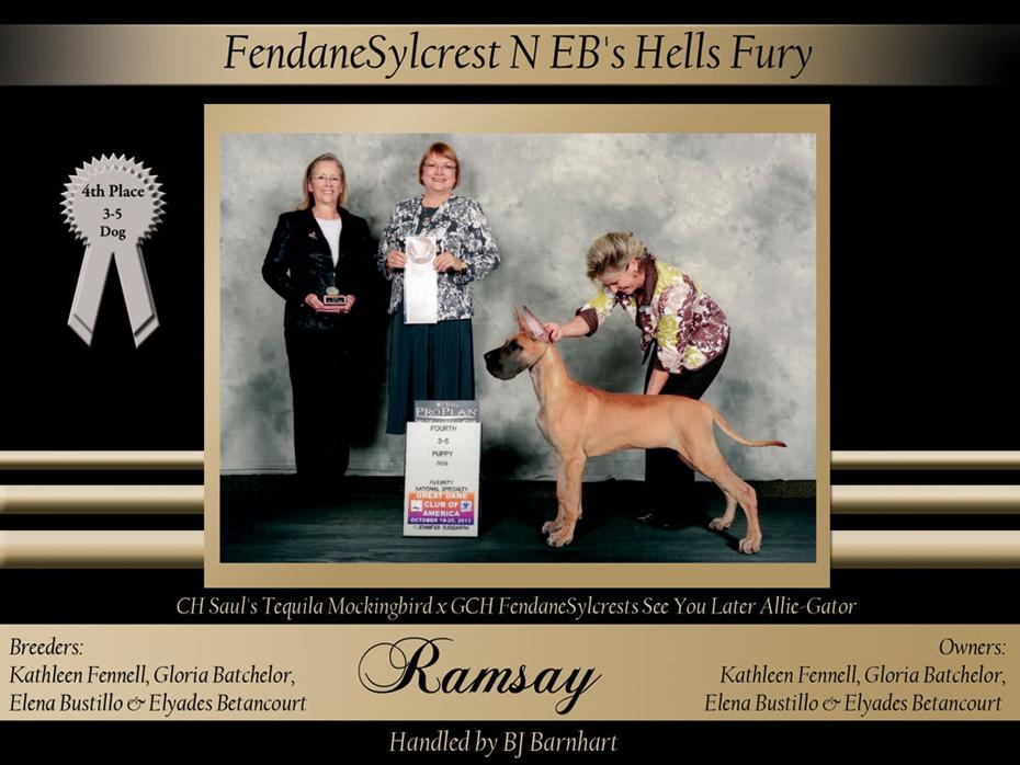 4th-3-5-futurity-dog-FendaneSylcrest-N-EBs-Hells-Fury