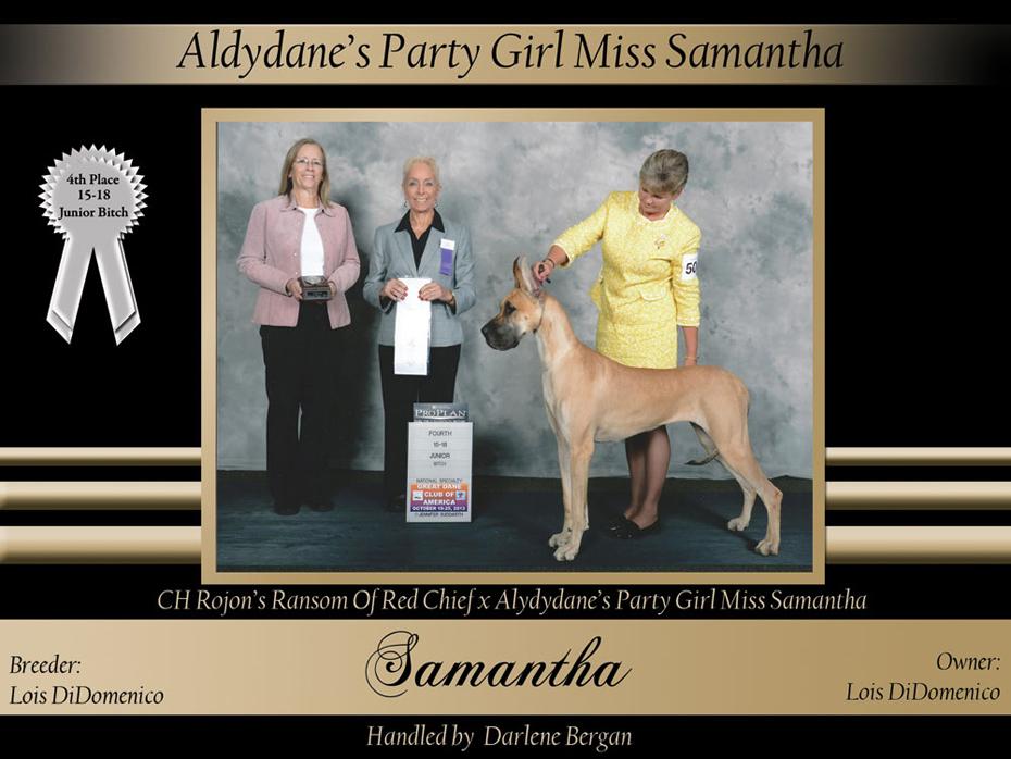 4th15-18--junior-dog-Aldydane's-Party-Girl-Miss-Samantha
