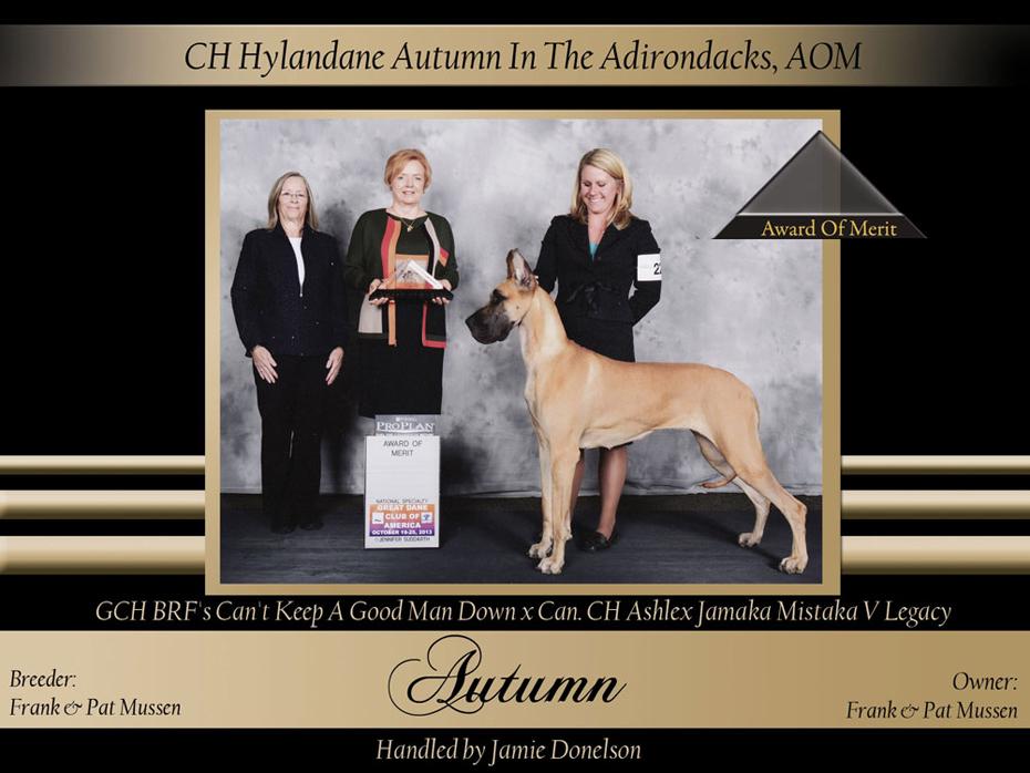 AOM-Hylandane-Autumn-In-The-Adirondacks