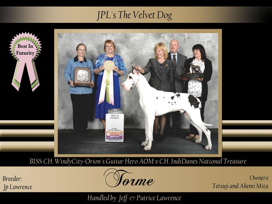 Best-In-Futurity-JPL's-The-Velvet-Dog