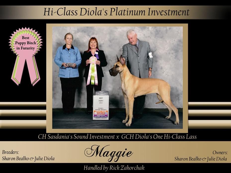 Best-Puppy-Bitch-in-Futurity-Hi-Class-Diolas-Platinum-Investment