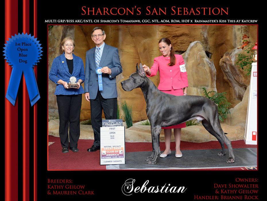 1st open blue dog Sebastian