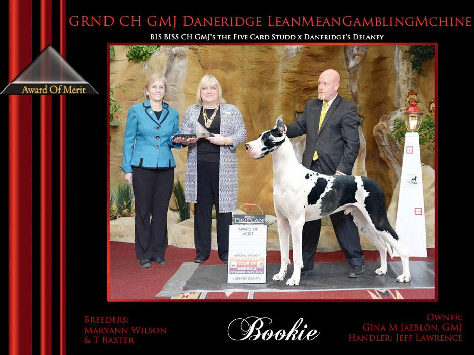 Award of merit Bookie