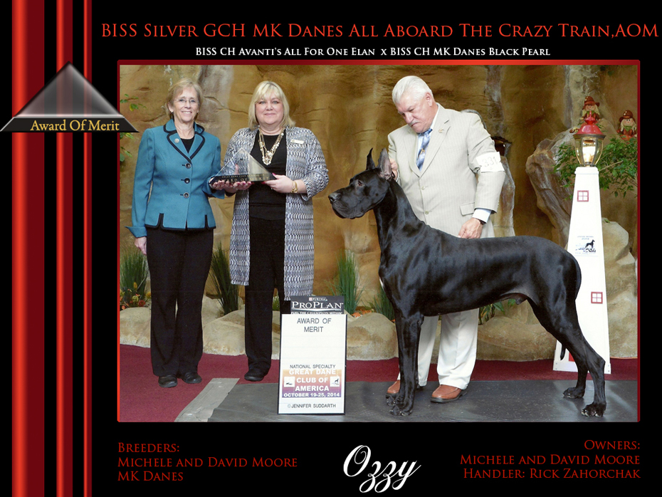 Ozzy  Award of Merit