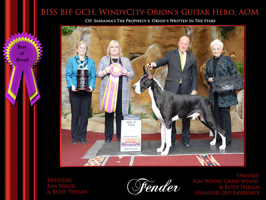 best of breed fender