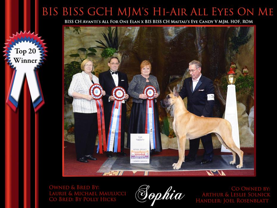 top 20 winner sophie